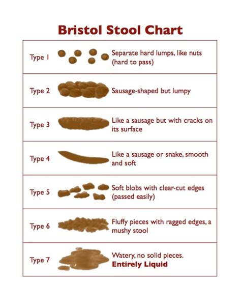 Bistol Stool Chart by Health The Scoop On