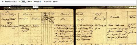 Santa Clara Birth Records The Genealogical Records Of The Matej Liska And Josepha Liska Family
