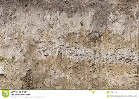 soil section soil profile in cross section stock photo image 56472518
