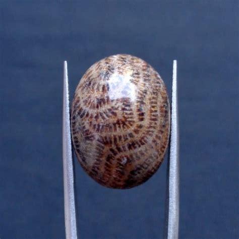 Alat Tes Batu Asli batu mustika lipan asli lulus tes mistik center