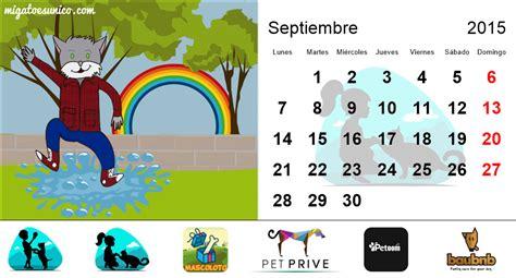 Calendario 2015 Ecuador Calendario 2015 De Gatos Ecuador Mi Perro Es 218 Nico