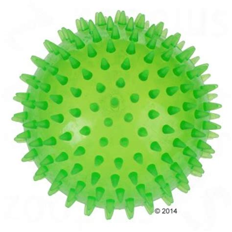 large balls large spiky free p p on orders 163 29 at zooplus