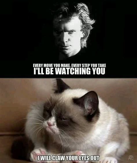 Sarcastic Cat Meme - grumpy cat 80 s music my style pinterest cats i