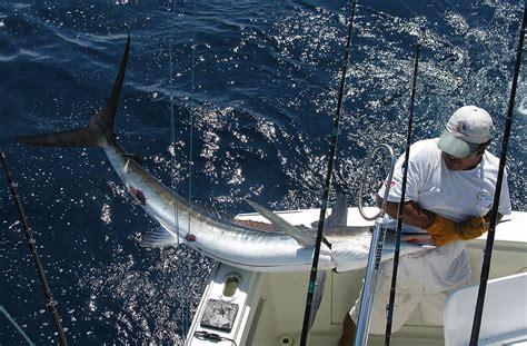 Reel Laut 11 Bearing Size 6000 mh 7000 fishing reel 11 bearings 5 2 1 black