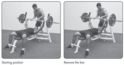 bench press proper technique proper bench press techniques image search results