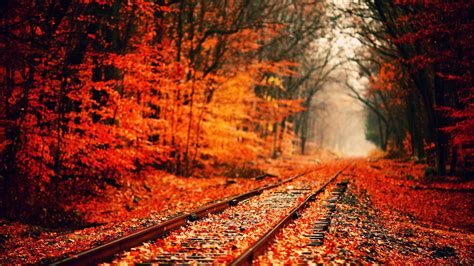 fall desktop wallpaper tumblr autumn tumblr wallpaper background ypz 1920x1080 px 414