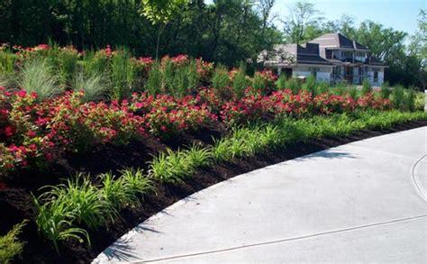 Landscape Ideas Using Knockout Roses Landscape Designs Using Knockout Roses Pdf