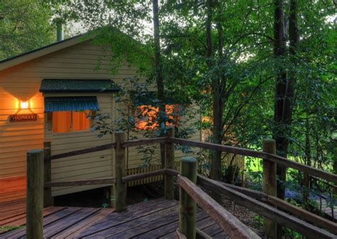 The Falls Rainforest Cottages by Gallery The Falls Montville