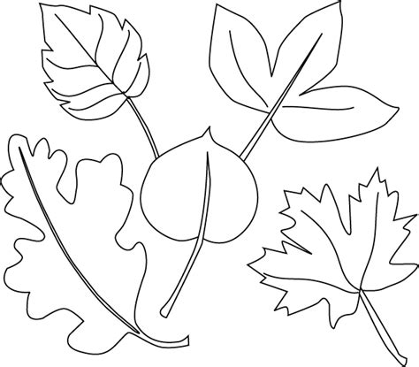 thanksgiving leaf coloring pages fall leaf coloring pages coloring pages trisha s board