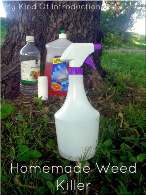 homemade flower food without bleach my kind of introduction homemade weed killer recipes