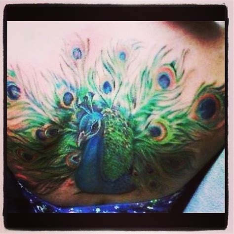 tattoo prices olympia 17 best images about peacock on pinterest