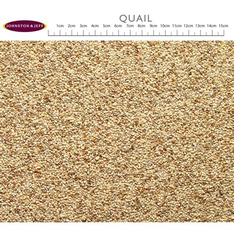 buy johnston jeff quail seed mix 12 75kg
