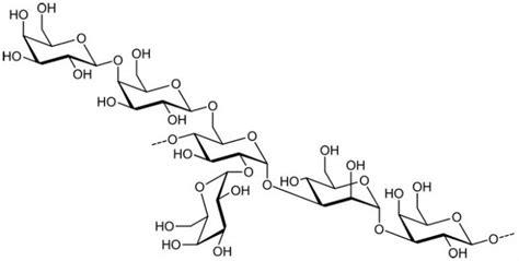carbohydrates znachenie полисахарид это что применение полисахаридов и их значение