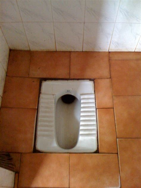 Bathroom Toilet India The Indian Toilet Stop India