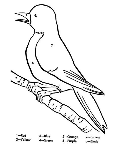 coloring page of a robin bird bird color page az coloring pages