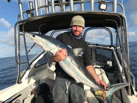 mako boats geelong richardson marine home of the south west fishing report