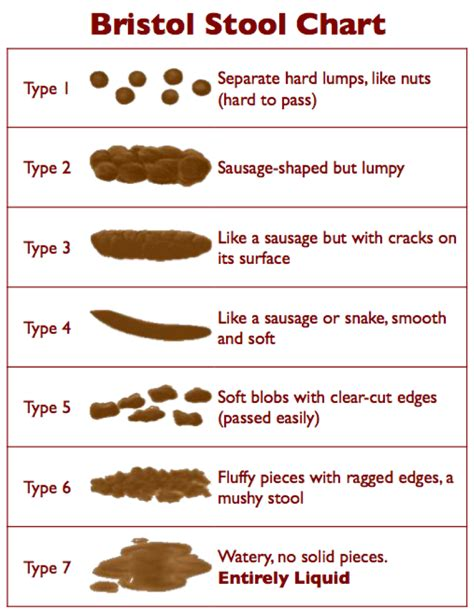 Bristol Stool Chart For by Bowel Movements Indicator Of Your Digestive Health