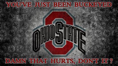 ohio state damn that hurts ohio state basketball wallpaper 26349786 fanpop
