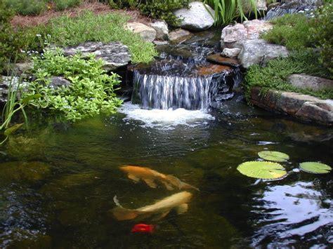 top 28 koi pond waterfalls waterfall pond with koi fish contemporary landscape koi pond