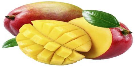 Chronic Juice Mangogo how to make mango juice wiki juices