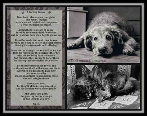 puppy poems poem animal d