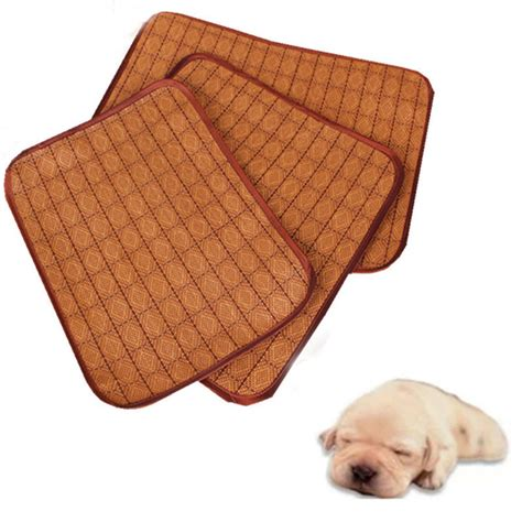 Sleeping On A Tatami Mat by Tatami Mats Sleeping Www Imgkid The Image Kid Has It