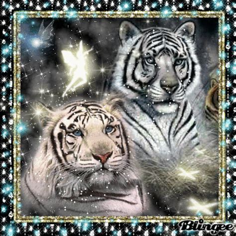 facts about the new year tiger tigers picture 110023605 blingee