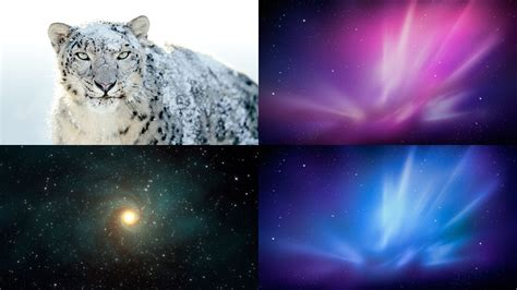 wallpaper for mac os x snow leopard snow leopard wallpaper pack by akol12 on deviantart