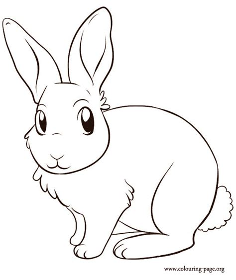 free coloring pages of baby rabbit