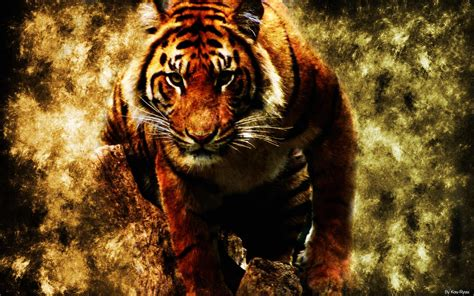 abstract tiger wallpaper abstract digital abstract fire tiger wallpapers hd