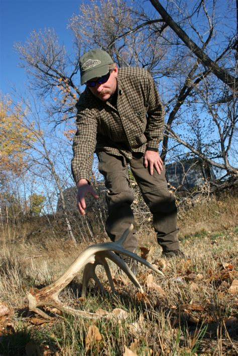how to a to hunt sheds scout for deer in big deer