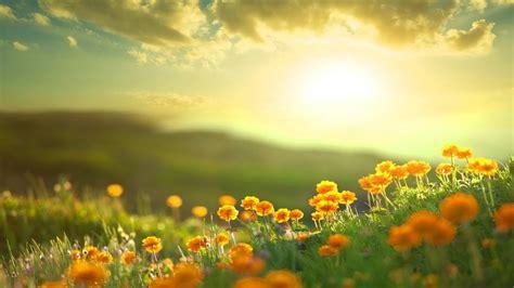 morning relaxing  positive feelings  energy