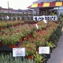 Houston Garden Center Phone Number by Houston Garden Centers 10 Reviews Nurseries