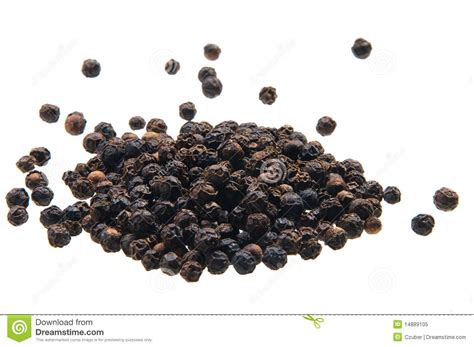 Cooks Whole White Pepper black peppercorn stock image image of flavor cook white