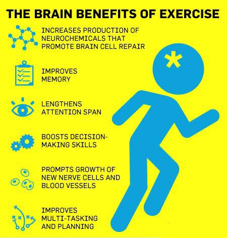 brain for ageing well 10 principles for staying vital happy and sharp books no chaser the benefits of exercise and other
