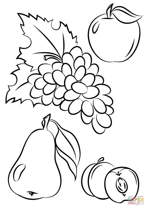 Autumn Vegetables Coloring Pages | color your own fruit printable fruit coloring pages