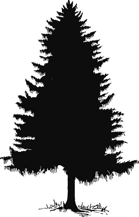 tree pattern png pine tree silhouette png clipart best