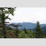 Taiga Landscape Winter | 1200 x 800 jpeg 195kB