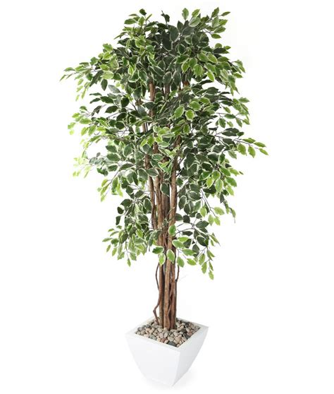 fake tree artificial 6ft weeping fig tree ficus tree silk tree
