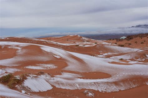 snow in desert it actually snowed in the sahara desert and the photos are