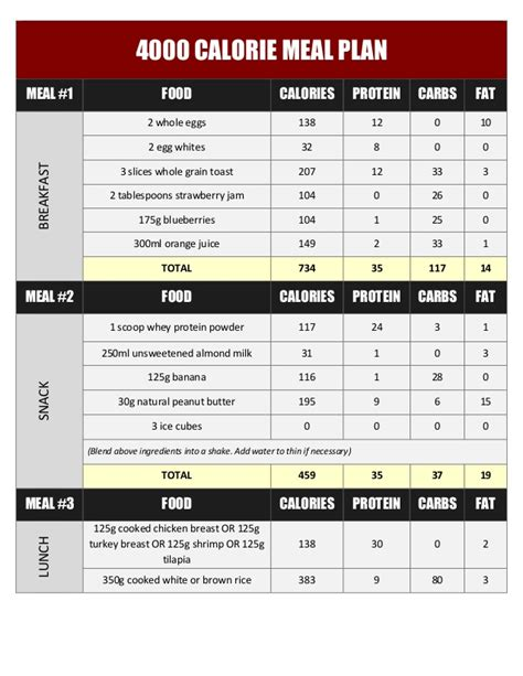 Six Pack Shortcuts Workout Outline by Transformation Blueprint Pdf Ebook Nalewanyj
