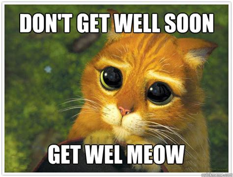 Funny Get Well Soon Memes - don t get well soon get wel meow shrek cat quickmeme