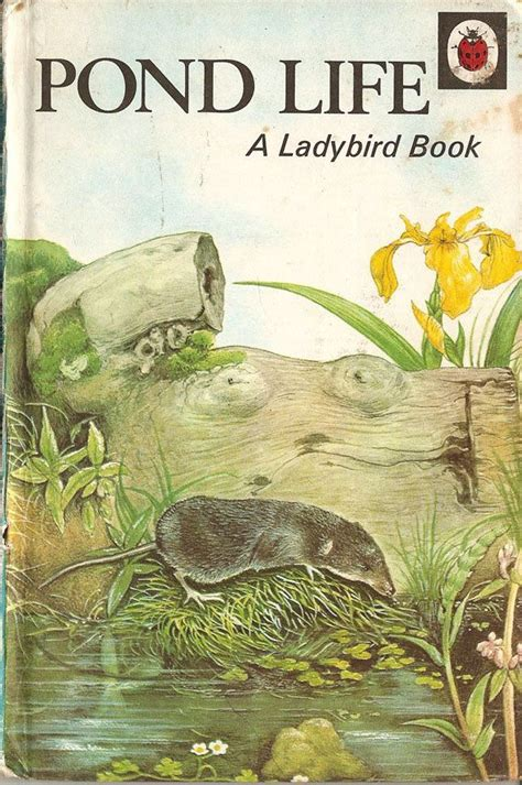 lost pond classic reprint books 25 best ideas about ladybird books on caravan
