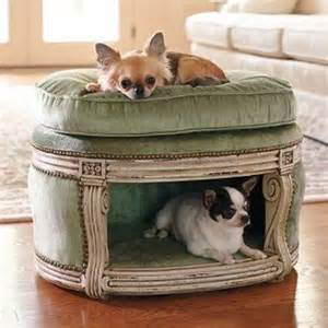 chihuahua bett 36 awesome beds for indoors and outdoors digsdigs