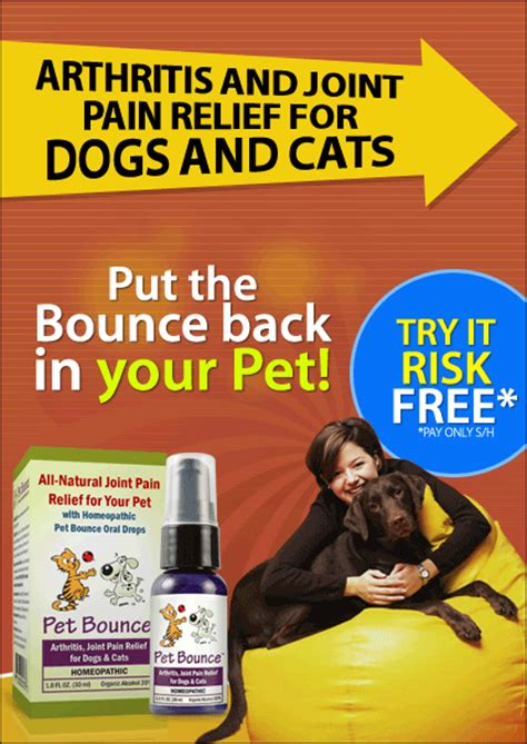 arthritis medication for dogs arthritis treatment with pet bounce relief