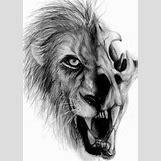 Half Lion Half Tiger Art | 511 x 720 jpeg 85kB