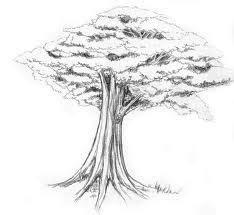 menggambar pohon
