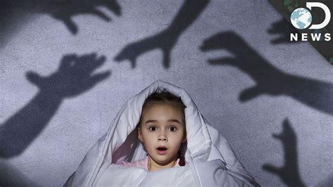 do dogs nightmares why do we get nightmares doovi