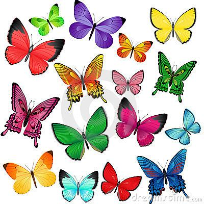 imagenes de varias mariposas farfalle colorate fotografia stock immagine 12761942