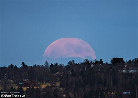 rare strawberry moon sees summer solstice coinciding summer solstice coincides with a full moon for the first